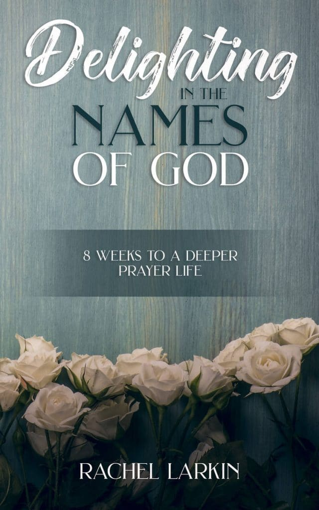 Dlighting in the Names of God by Rachel Larkin