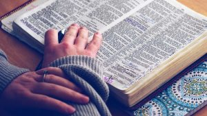 bible-commentary-and-devotions-author-scott-lapierre